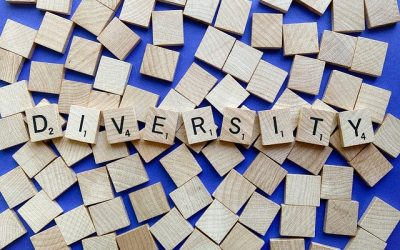 Cultural Sensitivity in Disability Services